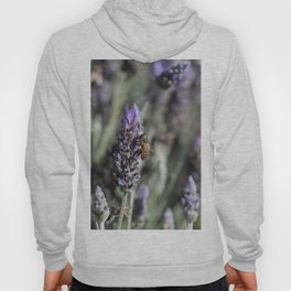 Lavender with Bee Hoody