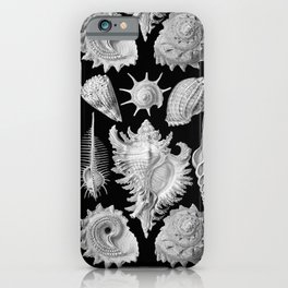 Black and White Beach Shells iPhone Case