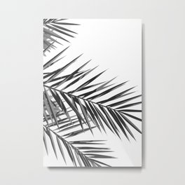Palms IV Metal Print