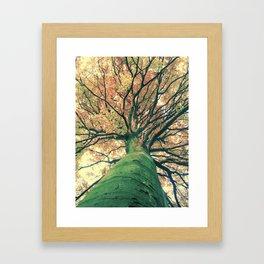 The big strong tree Framed Art Print