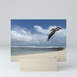 Pelican above the beach Mini Art Print