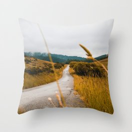 The Roadside Path (Color) Throw Pillow