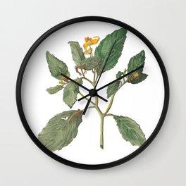 Impatiens Capensis Wall Clock