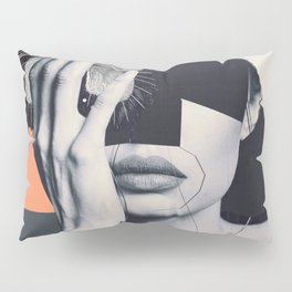 collage art / butterfly Pillow Sham