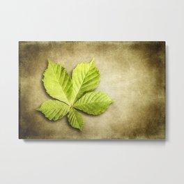 Horse Chestnut Leaf Metal Print