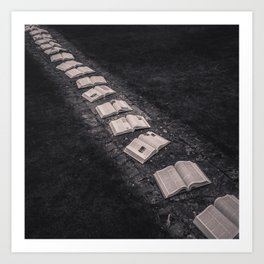 Book Path Art Print