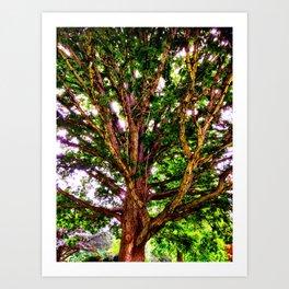 Psychedelic Tree Art Print