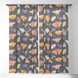 Moth Sheer Curtain