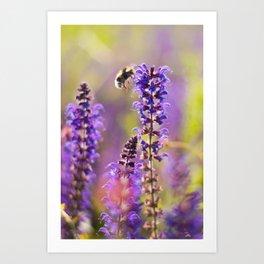 Lavender, Bees and Dreams Art Print