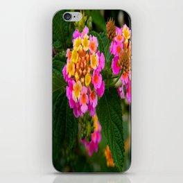Lantanas iPhone Skin
