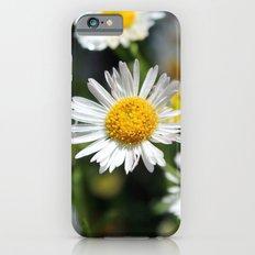 Darling Daises Slim Case iPhone 6s