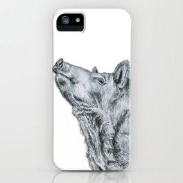 First, take a long jog, then reward yourself by eating like a hog! iPhone Case