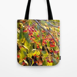 Bright red berries on a tree Tote Bag