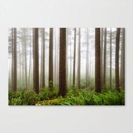Trees // Fog Canvas Print