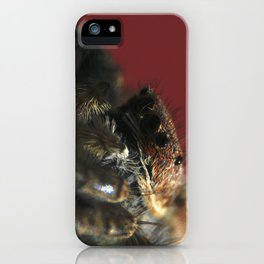 Spider on Red iPhone Case