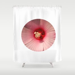Pink Hibiscus Close-up Flower Photography Shower Curtain