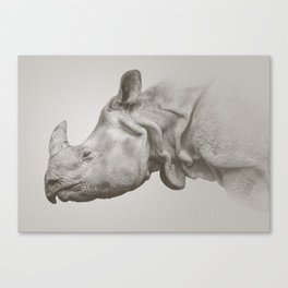 Rhino Photography | Warm Grey | Animals Canvas Print