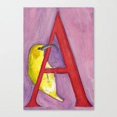 A for 'Akiapola'au Canvas Print