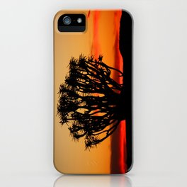NAMIBIA ... Quiver Tree Sunset iPhone Case