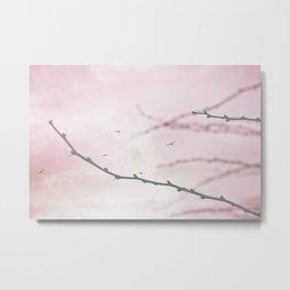 Pastel Winter Sky  Metal Print
