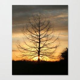 Dawns Morning Light Canvas Print