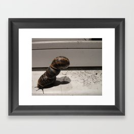 Snail Tower Framed Art Print