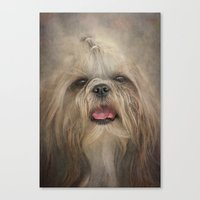 shih tzu Canvas Prints featuring Shih Tzu by Pauline Fowler ( Polly470 )