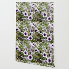 bellflower in bloom in the garden Wallpaper