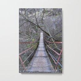 Mountain river. Crossing the bridge.... Metal Print