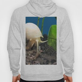 At A Snails Pace Hoody