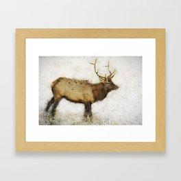 Grand Canyon Elk No. 1 Wintered Framed Art Print