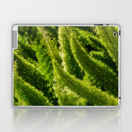 Green world Laptop & iPad Skin