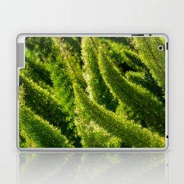 Green world Laptop & iPad Skin