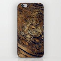 Bark Patterns iPhone & iPod Skin