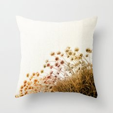 adagio diptych Throw Pillow