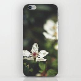 Sweet, Sweet Lies iPhone Skin