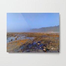 South Denman beach fog Metal Print