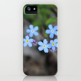 Five Forget-Me-Nots iPhone Case
