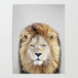 Lion 2 - Colorful Poster