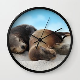 Sea lions family sleeping together on beach Wall Clock