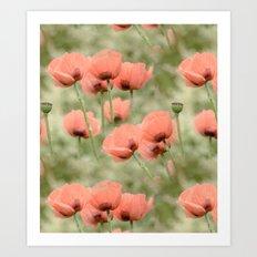 Pink Poppies patterns Art Print