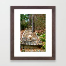 Autumn Stroll Framed Art Print