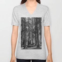 a walk in the woods Unisex V-Neck