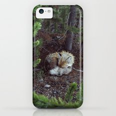Sleeping Fox iPhone 5c Slim Case