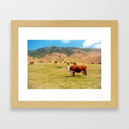 Mountain Bovine Framed Art Print