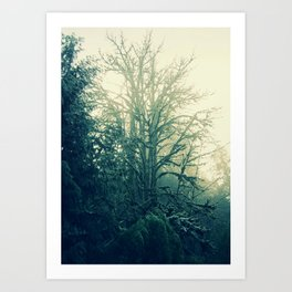 The Tree Spirit #4 Art Print