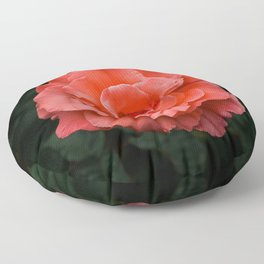 Touch of Class hybrid orange rose is blooming Floor Pillow