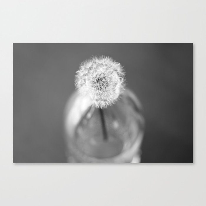 wishes in a jar Canvas Print