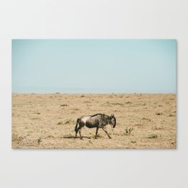 Mara Wildebeest Canvas Print