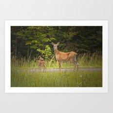 Doe and Fawn along a roadside near Iron Mountain Michigan Art Print